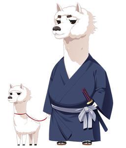 Saigou Pakamori