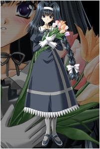 Mikami Towa