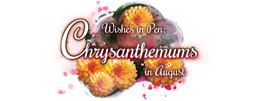 Wishes in Pen: Chrysanthemums in August